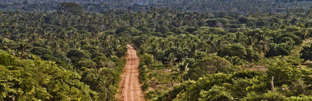 Africawildtruck-guide-di-viaggio-strada-fotografia-africa-mozambico-stefano-pesarelli-guazzo-francesca-fotografi-min